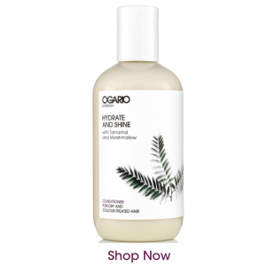 hydrate and shine conditioner bottle on white background and text shop now